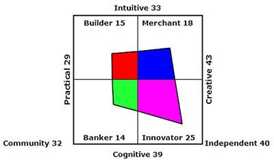 CVI Ladder CVI-Innovator-Merchant